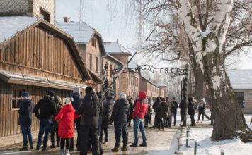 Auschwitz Birkenau Kraków